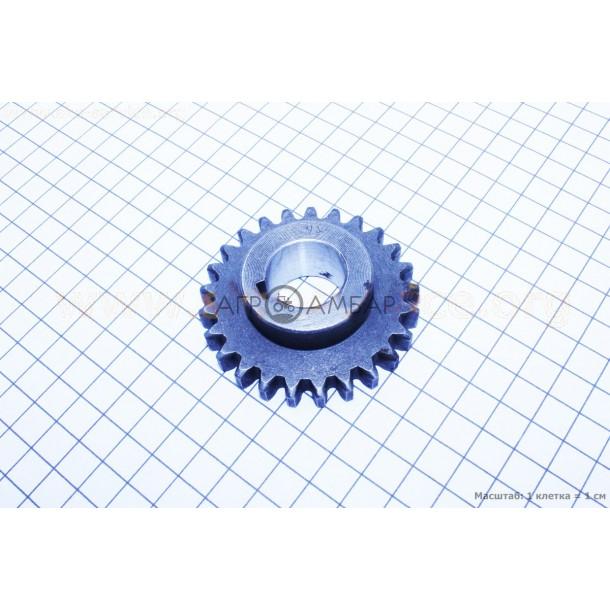 Шестерня под шпонку h=20мм, Z=25 (R175/R180/R190/R195)